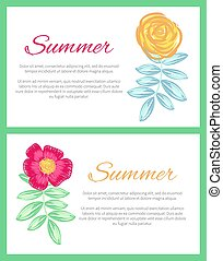 Summer Set of Two Posters Vector Illustration