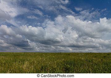Summer Skies Over Hay Field