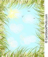 Summer Sky Design
