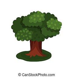 Summer sprawling tree vector Illustration