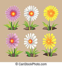 Summer Spring Flower Collection Set Vector