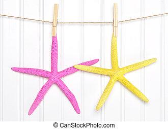 Summer Starfish on a Clothesline