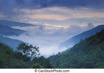 Newfound Gap - Summer storm approaching Newfound Gap in the...