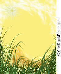 Summer Sun - A background design with sun and summer...