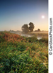 Summer sunrise on the river