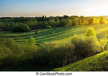 Summer sunrise over beautiful hills landscape