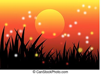 summer sunset background