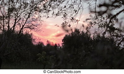 Summer sunset Italy - Evening sky in Italy, accelerated...