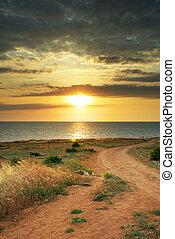 Summer sunset. Nature composition.