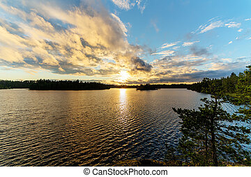summer sunset over the forest lake