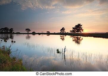 summer sunset over wild lake