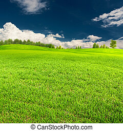 Summer time, abstract environmental backgrounds for your design
