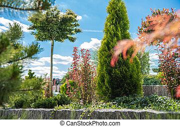 Summer Time Backyard Garden