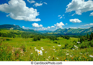 Summer time mountain panoramic landscape at Switzerland