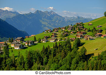 Summer time mountain panoramic landscape in Switzerland