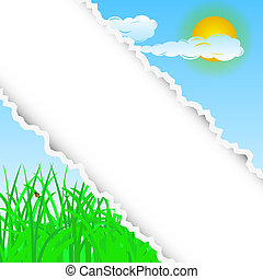summer torn background with place for your text. Vector illustration