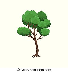 Summer tree vector Illustration on a white background