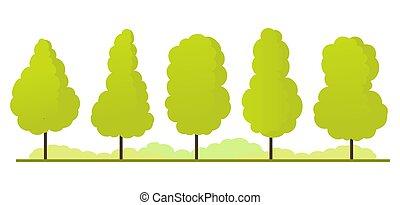 Summer. Trees set