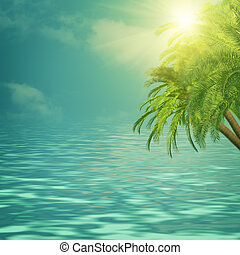 Summer trip backgrounds with palm tree