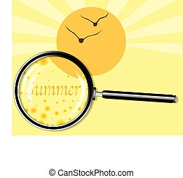 Summer Under The Magnifying Glass