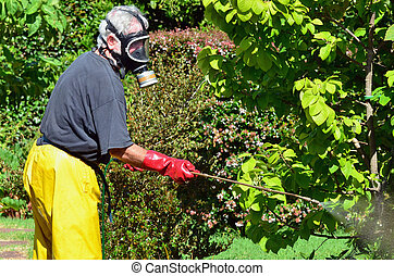 Summer - Vacation - A man sprays plants in the garden.