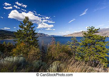 Summer Vegetation around Scenic Lake Okanagan, BC,