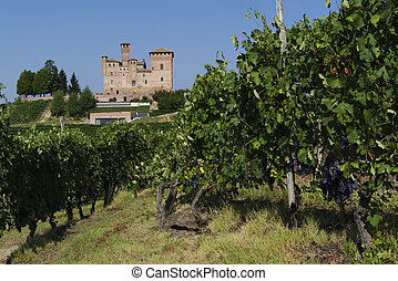Summer view in the Langhe Unesco heritage - Summer view of ...