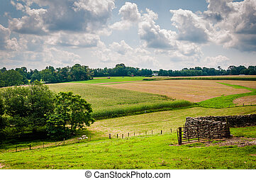 Summer view of farm fields in rural Baltimore County, Maryland.