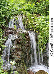 Summer waterfalls in a green forest