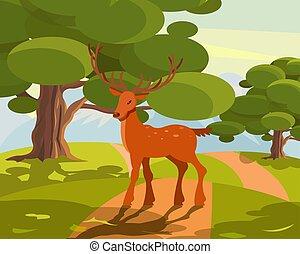 Summer wildlife landscape, deer with large branched horns on...