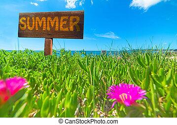 Summer written on a wooden sign