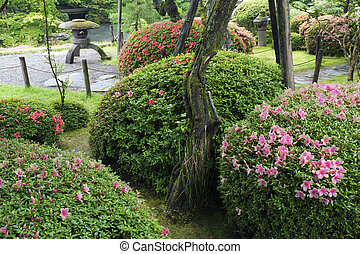 summer Zen garden