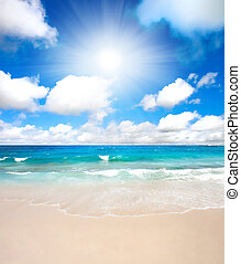 Summertime beach - A sunny summertime beach scene