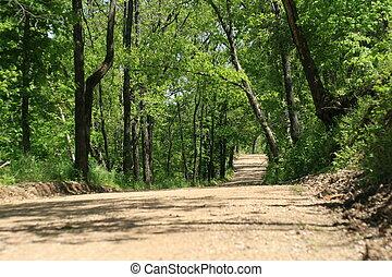 Summertime dirt roads