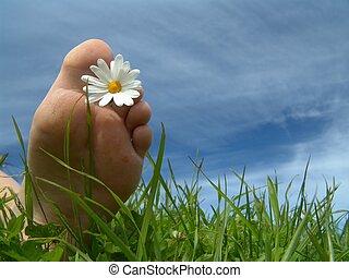 Foot w/daisy like flower