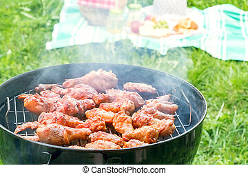 Summertime picnic in the courtyard - Cooking chicken wings on a round grill close up