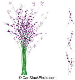 summertime purple Lavender flower on white background