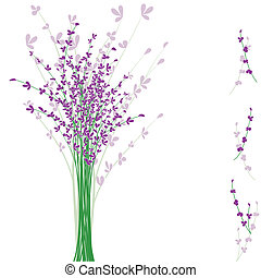 summertime purple Lavender flower on white background