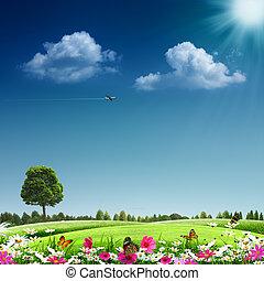 summertime., resumen, eco, fondos, para, su, diseño
