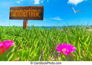 Summertime written on a wooden sign