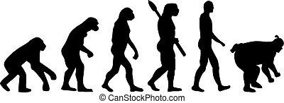 sumo, 進化, レスリング