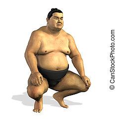 sumo, 2, luchador