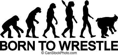 sumo, né, évolution, lutter, lutte