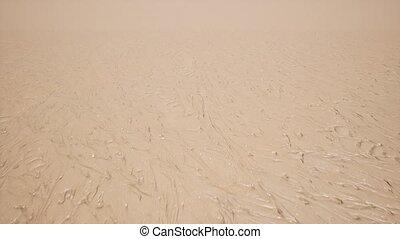 sumpf, dreckige , landschaftsbild, sand, nasse, schlick, oberfläche