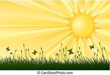 sun., λιβάδι