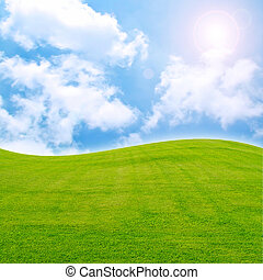 sun and field of green fresh grass under blue sky