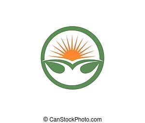 Sun and leaf go green leaf logo symbols