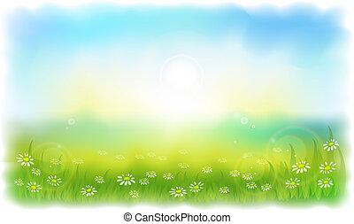 Залитый солнцем луг с ромашками. Солнечный летний день на открытом воздухе. Векторная иллюстрация Имитация акварели.