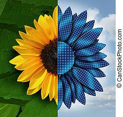 Sun Energy - Sun energy concept as a sunflower divided in...