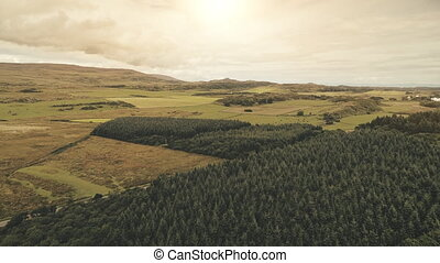 Sun fields at pine forest aerial. Nobody nature landsape at summer sunny day. Countryside farmland meadows, valleys. Cinematic farm pastures at Ellen port, Islay Island, United Kingdom, Europe
